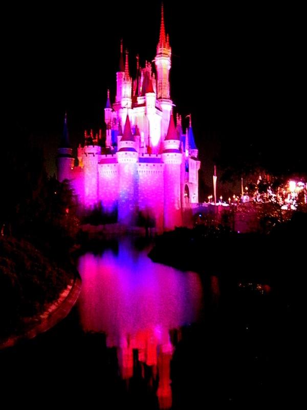 Castle magic kingdom