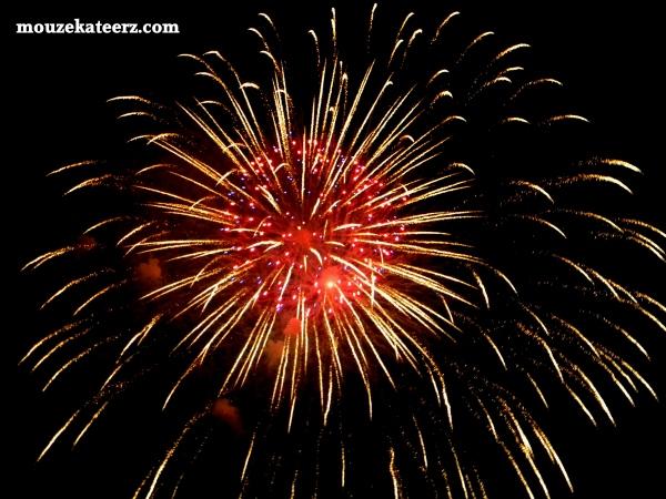 Disney Wishes, Disney fireworks, Disney vacation, Disney photography, fireworks