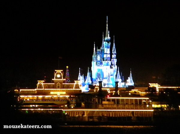 Magic kingdom picture at night, stay up late magic kingdom, Cinderella castle at night