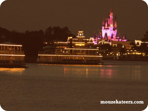 baby at disney, cinderella castle at night,  disney ferry at night, disney world boat, disney world ferry