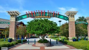 Downtown Disney World of Disney, Downtown Disney Pleasure Island, Downtown Disney Free