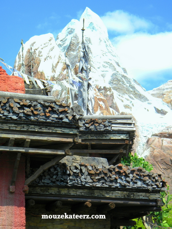 Expedition Everest, Theme Park Rides, Disney's Animal Kingdom