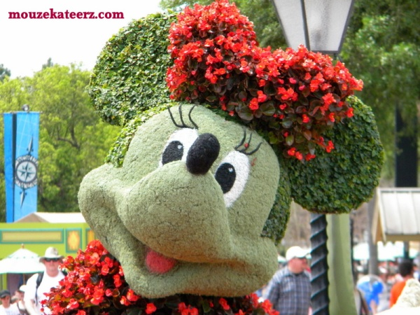 Minnie Mouse, Minnie Mouse princess, Disney Princess, Epcot flowers, Minnie Mouse flowers