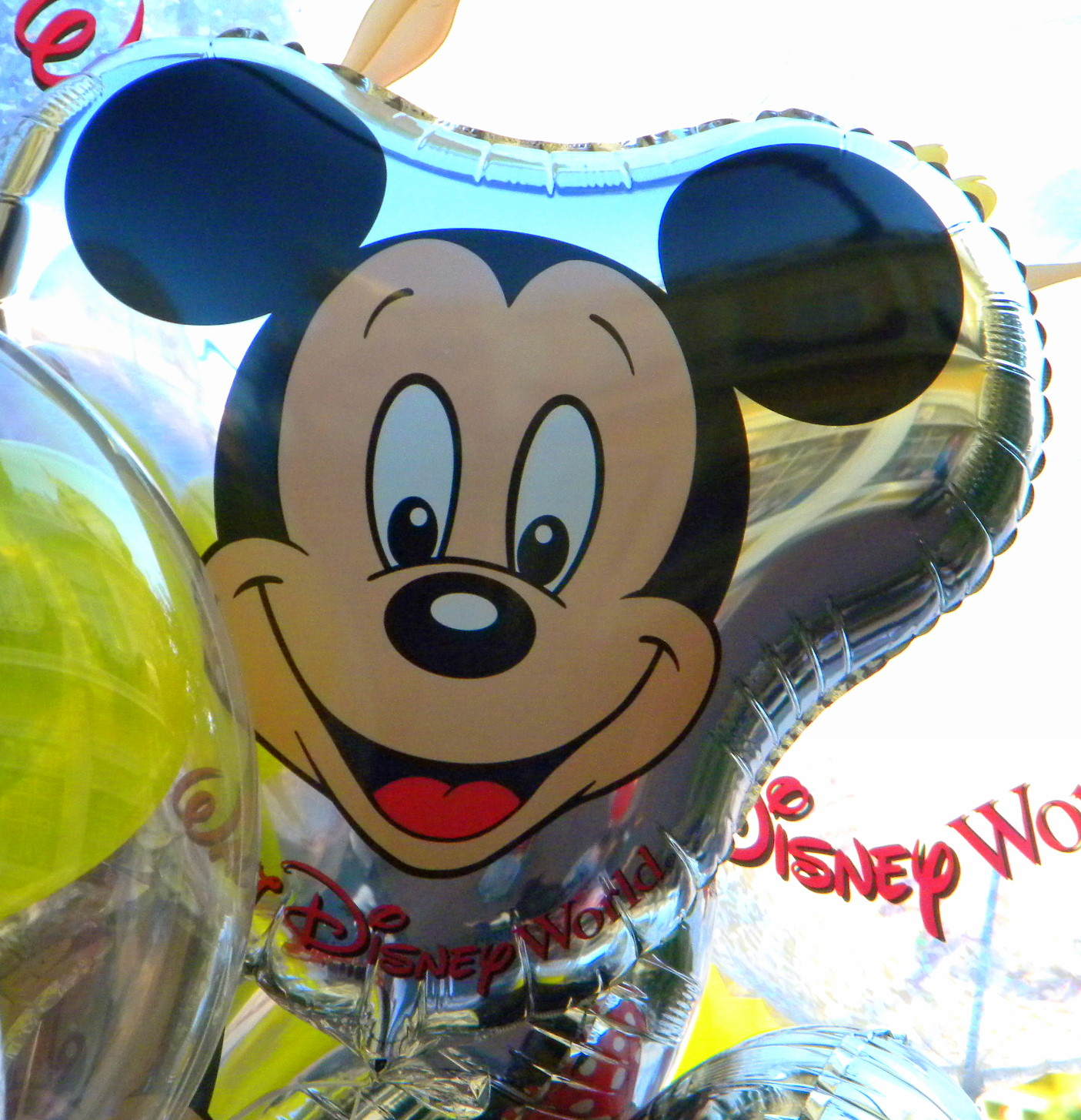 Fabulous Ideas to Celebrate a Kid's Birthday at Walt Disney World