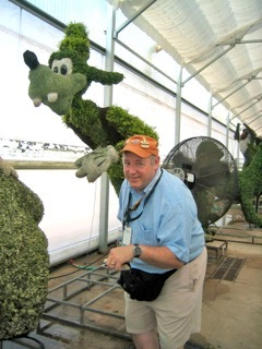 Goofy Topiary, Disney topiary, Mickey Mouse topiary, Disney gardening