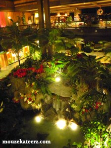 Polynesian Resort Disney waterfall, Polynesian Resort Lobby