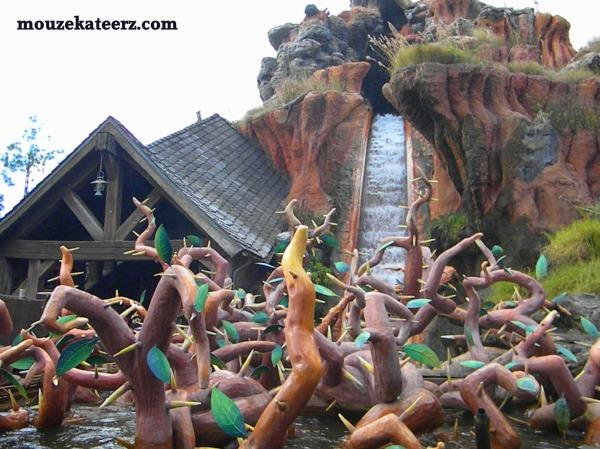 Splash Mountain, Splash Mountain Fastpass, Fastpass explanation, Disney Fastpass rules,