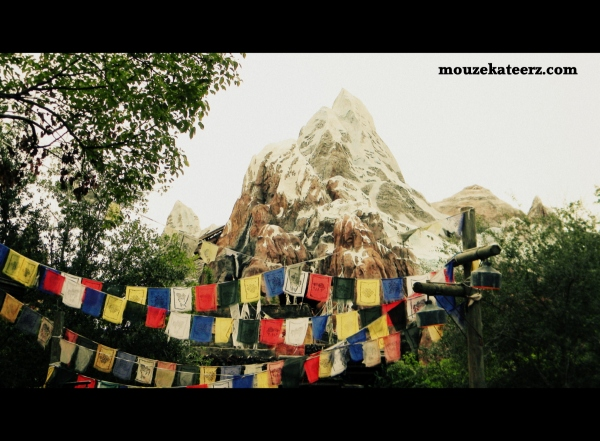 Expedition Everest, Mount Everest, Animal Kingdom, Animal Kingdom park, roller coaster, Disney Everest,