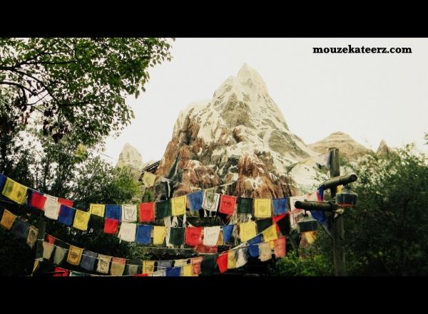 Expedition Everest, Mount Everest, Animal Kingdom, Animal Kingdom park, roller coaster, Disney Everest,