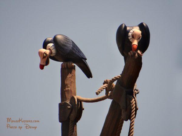 Seven Dwarfs vultures